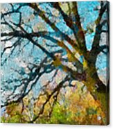 The Tree Of Many Colours  Acrylic Print