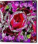 The Tulip Acrylic Print