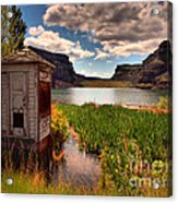 The Water Shed Acrylic Print by Tara Turner