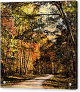 The Way Home Acrylic Print