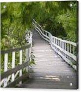 The Whitewater Walk Boardwalk Trail Acrylic Print