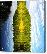 The Wine Bottle Acrylic Print
