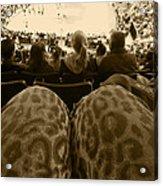 The World Thru Leopard Printed Pants Acrylic Print