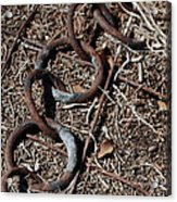 These Rusty Chains Acrylic Print