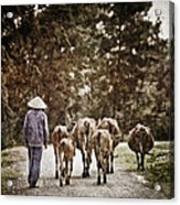 They Walk Together Acrylic Print