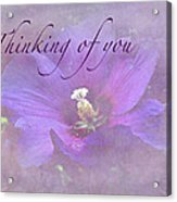 Thinking Of You Greeting Card - Rose Of Sharon Acrylic Print
