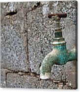 Thirsty Acrylic Print by Stelios Kleanthous