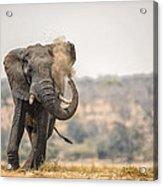 This Is Botswana No.  8 - Feels So Good Acrylic Print