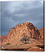 This Is Utah No. 28 - Life And Death Acrylic Print