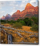 This Is Zion Acrylic Print