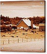 This Old Farm IIII Acrylic Print