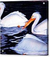 This Way No This Way Acrylic Print