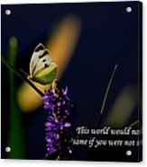 This World Acrylic Print
