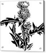 Thistle, Lino Print Acrylic Print