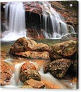 Thomson Falls Acrylic Print