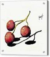 Three Cherries Acrylic Print