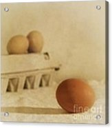 Three Eggs And A Egg Box Acrylic Print