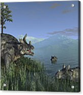 Three Estemmenosuchus Mirabilis Face Acrylic Print