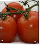 Three  Little Tomatoes Acrylic Print