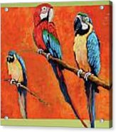 Captive Birds And Abstracted Rain Forest   Acrylic Print