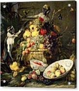 Three Monkeys Stealing Fruit Acrylic Print