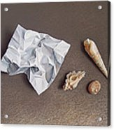 Three Shells For Collection Acrylic Print