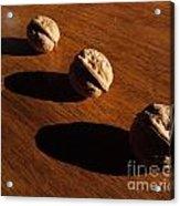 Three Walnuts Photograph Acrylic Print