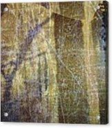 Through A Glass Darkly Acrylic Print