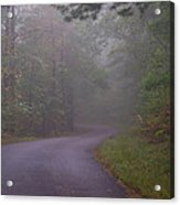 Through The Forest Dark And Deep 0 Acrylic Print