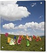 Tibetan Prayer Flags In A Field Acrylic Print by David Evans