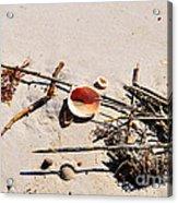 Tidal Treasures Acrylic Print