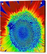 tiedyed Sunflower Acrylic Print