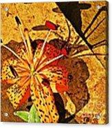 Tiger Lily Still Life  Acrylic Print