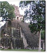 Tikal And Its Pyramids Acrylic Print