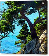 Timber Cove In Sonoma Coast Acrylic Print