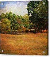 Timbers Pond Acrylic Print by Jai Johnson
