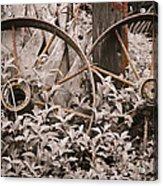 Time Forgotten Acrylic Print