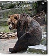 Time Out Bear Acrylic Print