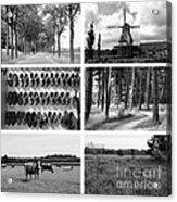 Timeless Brabant Collage - Black And White Acrylic Print