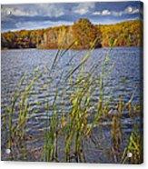 Tiny Island On Hall Lake No 0086 Acrylic Print