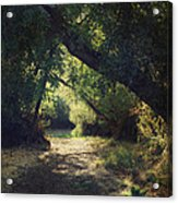 To My Happy Place Acrylic Print