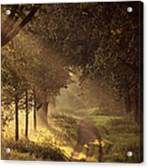 To The Shire Acrylic Print