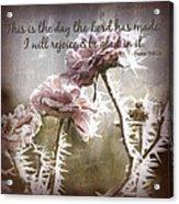 Today Acrylic Print by Bonnie Bruno
