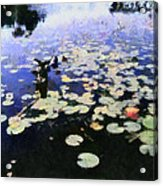 Torch River Water Lilies 3.0 Acrylic Print