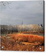 Toronto Skyline 12 Acrylic Print