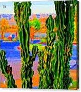 Totem Cactus Acrylic Print
