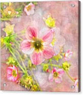 Touch Of Spring Acrylic Print