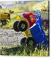 Toy Truck Planters Acrylic Print by Gordon Wood