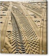 Tracks In . Sand Acrylic Print by Sam Bloomberg-rissman