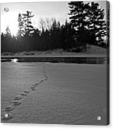 Tracks To The Water Acrylic Print